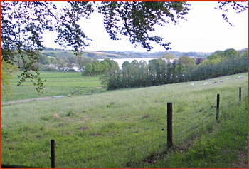 ravns-2006-034